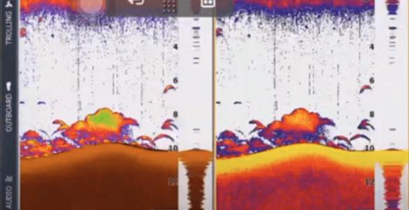 Registro de sonda con dos paletas de color