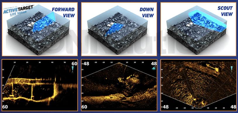 Tres modos de visión de live sonar